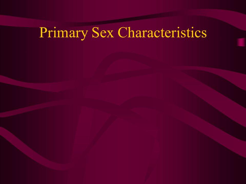Primary Sex Characteristics