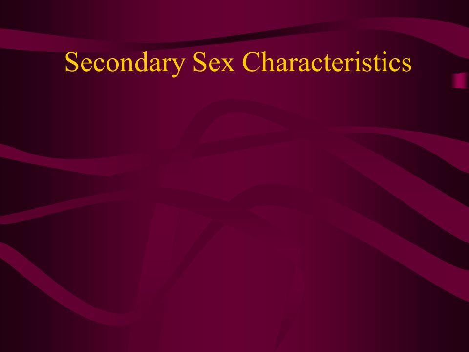 Secondary Sex Characteristics
