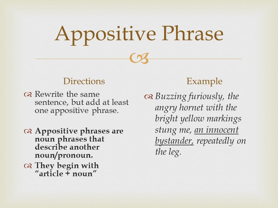  Appositive Phrase Directions  Rewrite the same sentence, but add at least one appositive phrase.