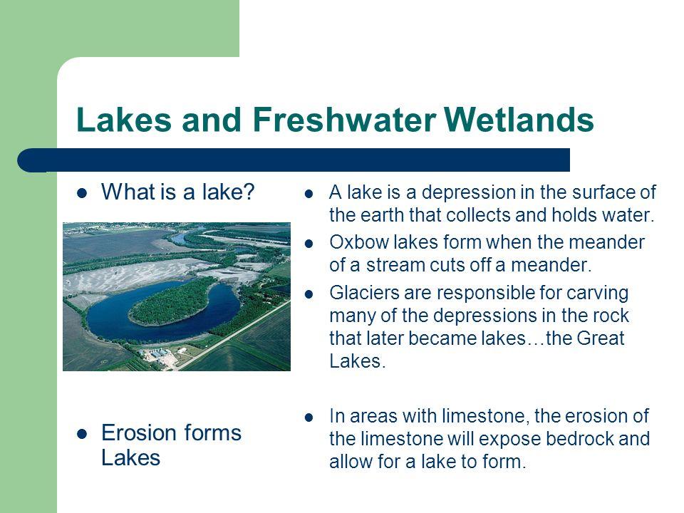 Streams, Lakes & Wetlands UNIT 6 STANDARDS: NCES 2.3.2, 2.4.1 ...