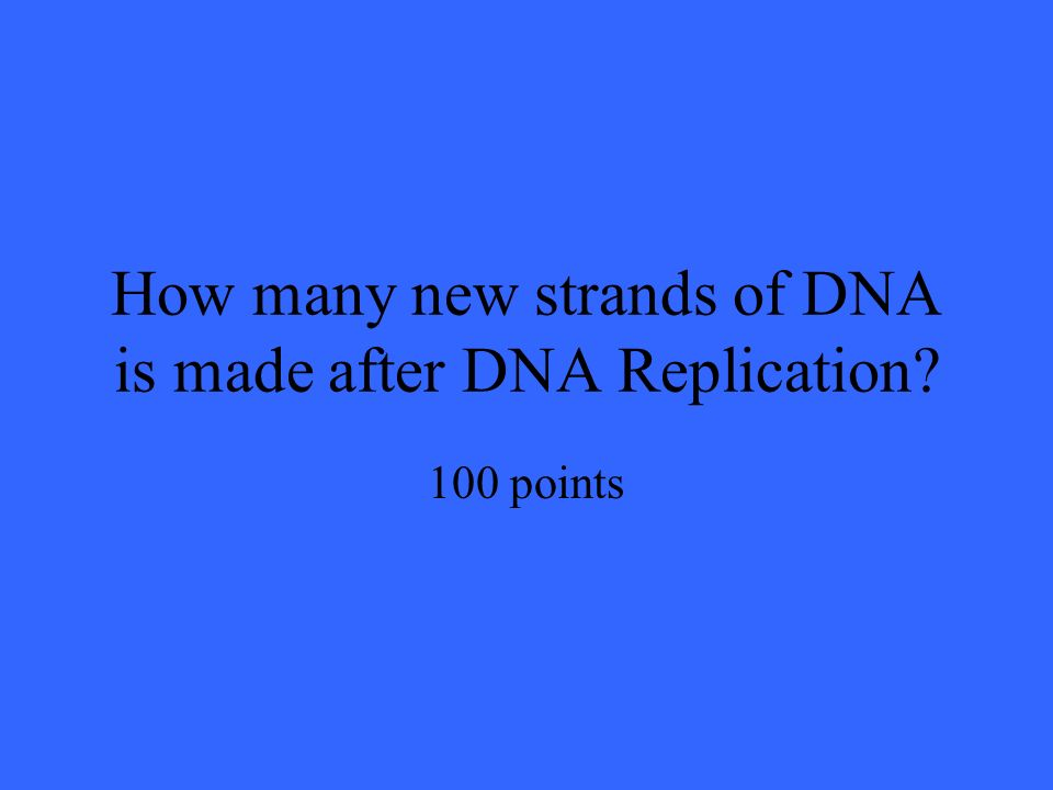 How many new strands of DNA is made after DNA Replication 100 points