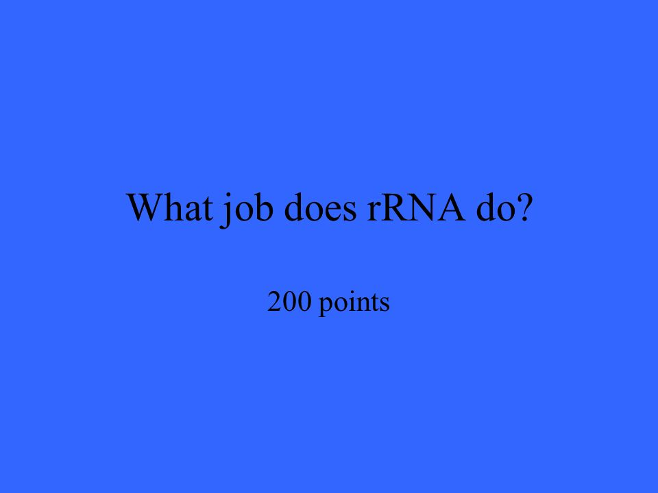 What job does rRNA do 200 points