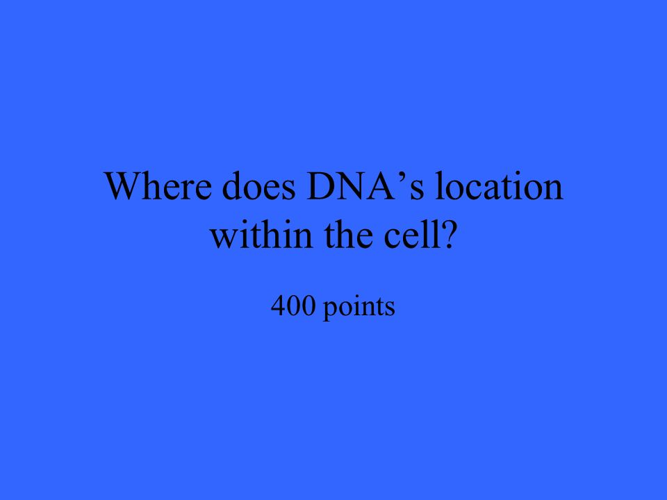 Where does DNA's location within the cell 400 points