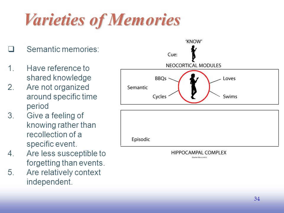 EE Varieties of Memories  Semantic memories: 1.Have reference to shared knowledge 2.Are not organized around specific time period 3.Give a feeling of knowing rather than recollection of a specific event.