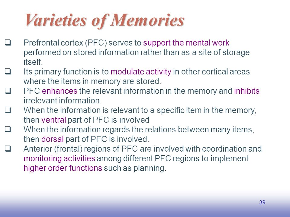 EE Varieties of Memories  Prefrontal cortex (PFC) serves to support the mental work performed on stored information rather than as a site of storage itself.