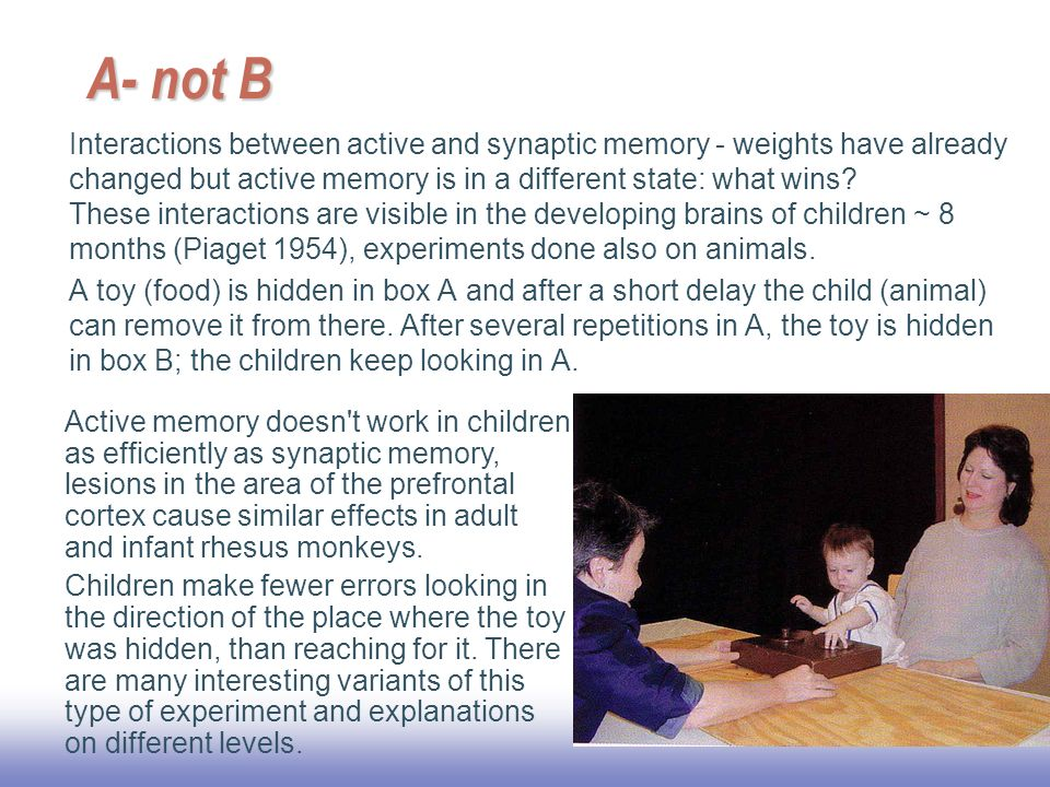 EE A- not B Interactions between active and synaptic memory - weights have already changed but active memory is in a different state: what wins.