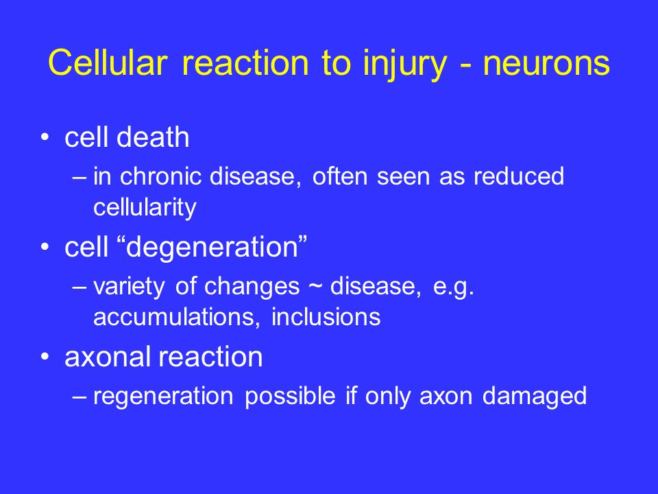 Cellular reaction to injury - neurons cell death –in chronic disease, often seen as reduced cellularity cell degeneration –variety of changes ~ disease, e.g.