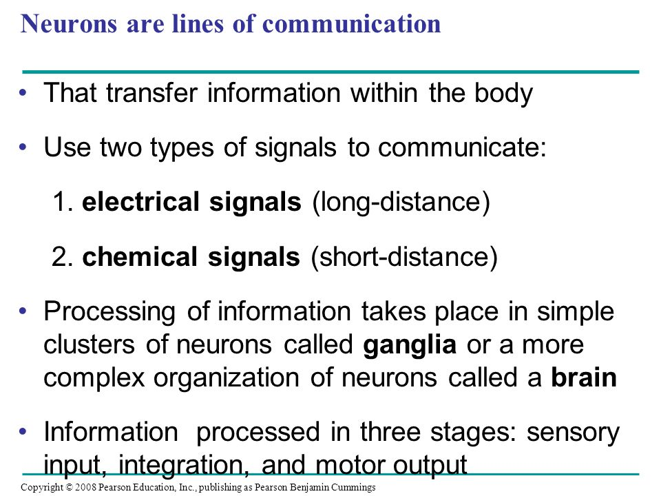 Copyright © 2008 Pearson Education, Inc., publishing as Pearson Benjamin Cummings Neurons are lines of communication That transfer information within the body Use two types of signals to communicate: 1.