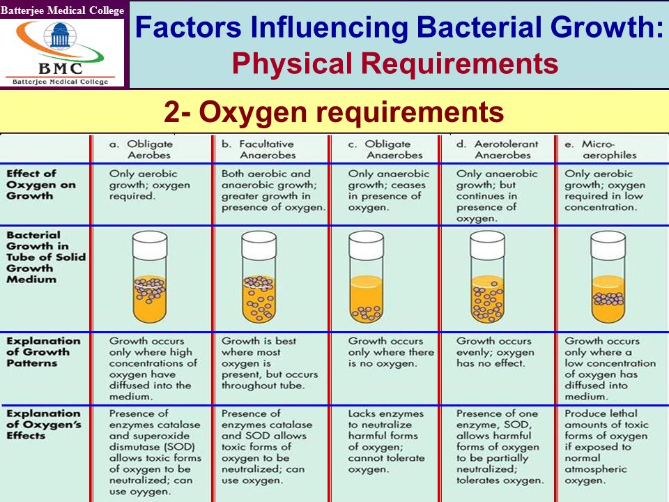 oxygen requirements of bacteria Home medical reference and training manuals oxygen requirements for bacterial growth - food service sanitation and inspections i time requirements.