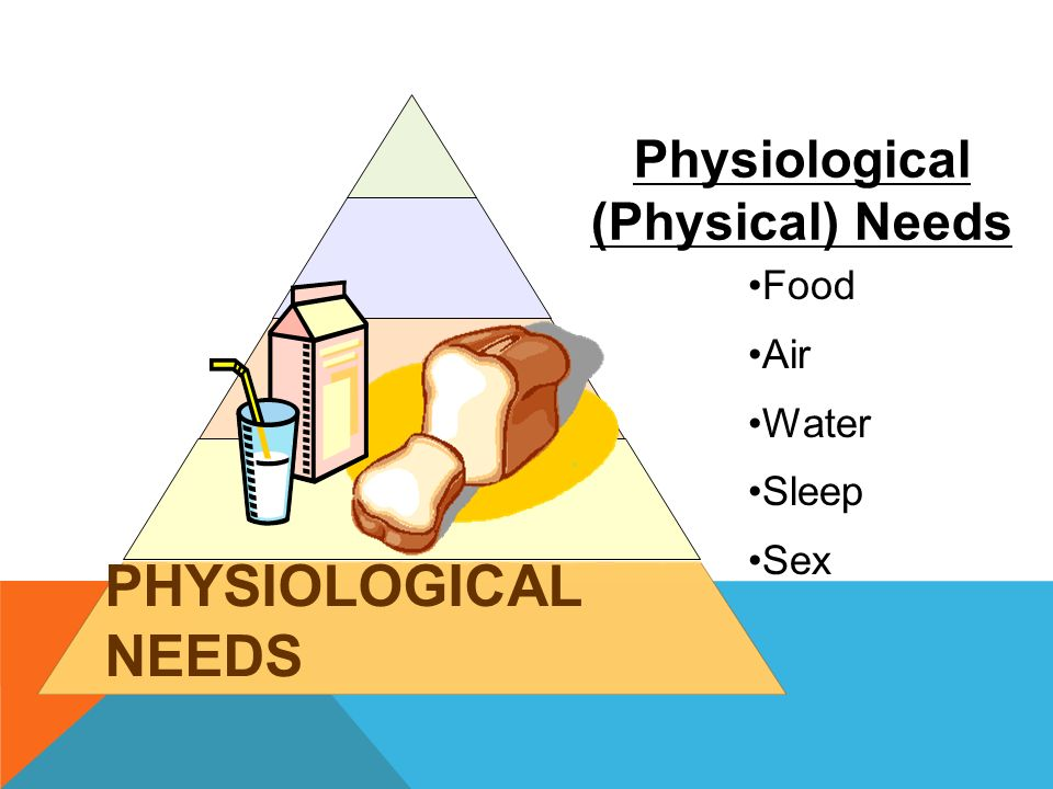 PHYSIOLOGICAL NEEDS Food Air Water Sleep Sex Physiological (Physical) Needs
