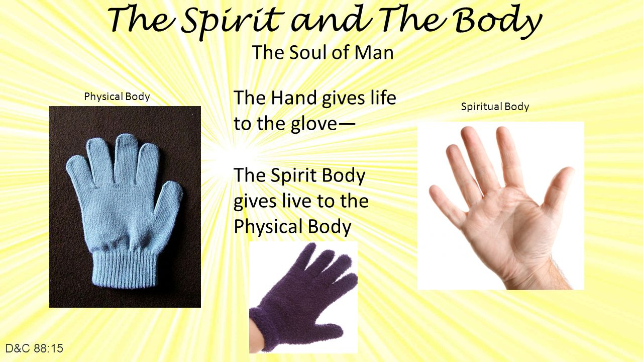 The Spirit and The Body D&C 88:15 The Soul of Man The Hand gives life to the glove— The Spirit Body gives live to the Physical Body Physical Body Spiritual Body