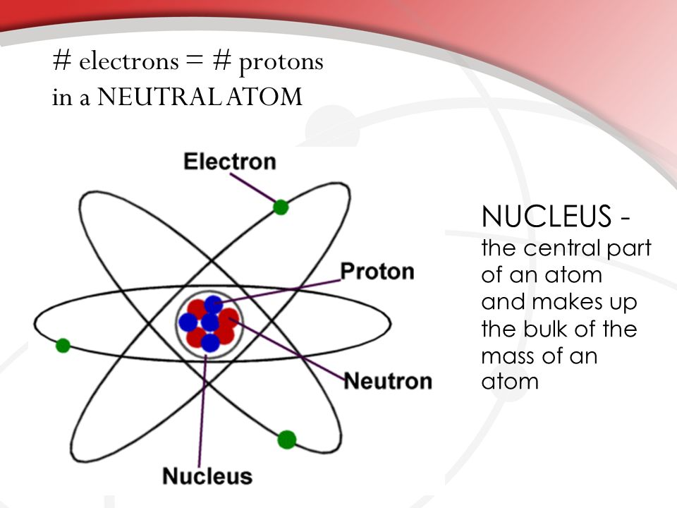 NUCLEUS - the central part of an atom and makes up the bulk of the mass of an atom # electrons = # protons in a NEUTRAL ATOM