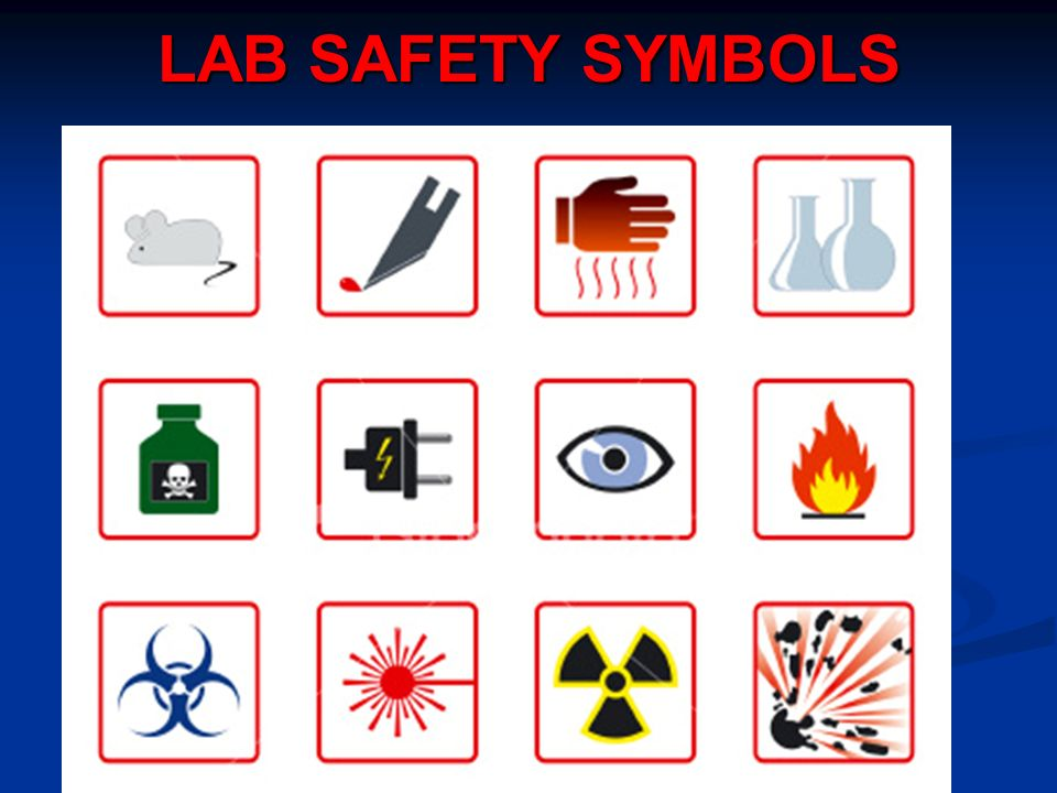 Recognizing The Importance Of Laboratory Safety Essay Academic