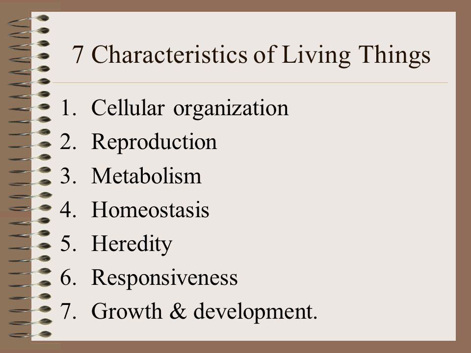 Characteristics Of Living Things Worksheet Answers Templates and – Characteristics of Life Worksheet