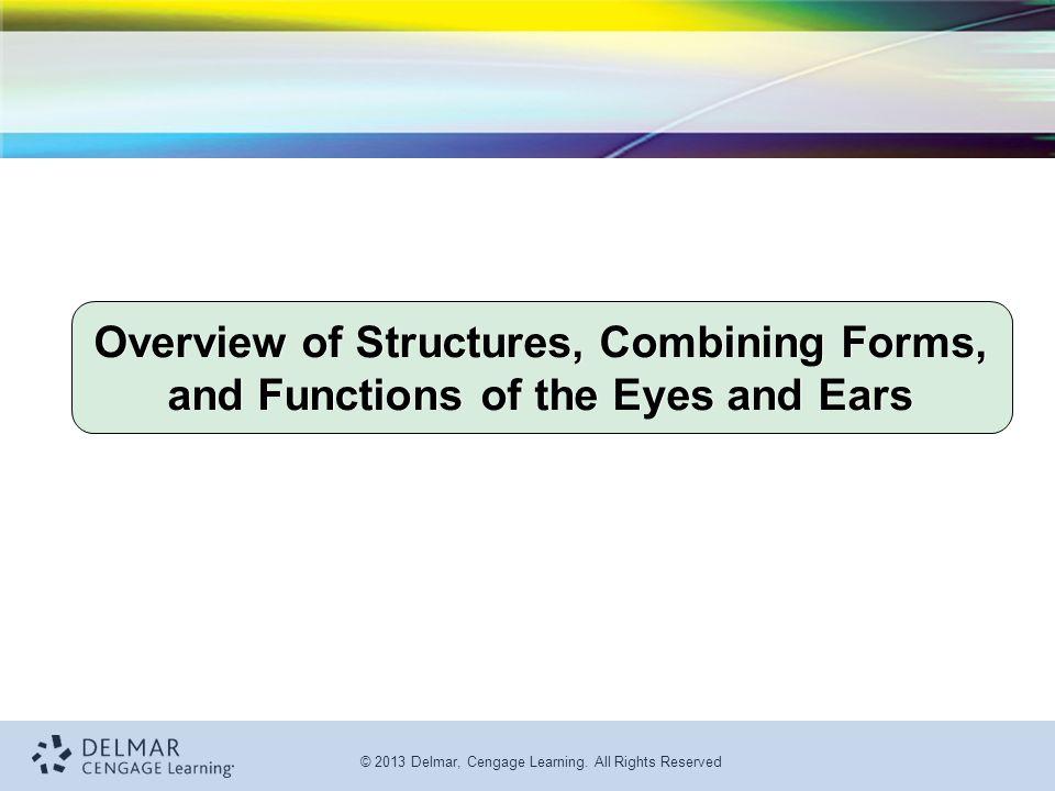 7th Edition Medical Terminology for Health Professions Ann Ehrlich ...