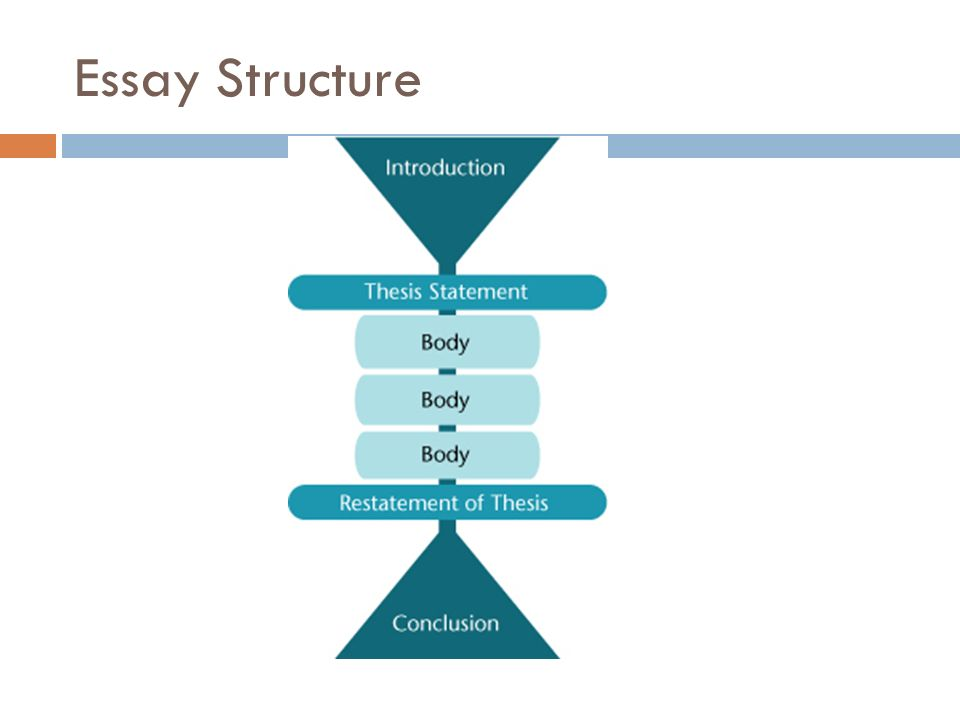 essay tips for research essays essay structure the thesis  the  2 essay structure