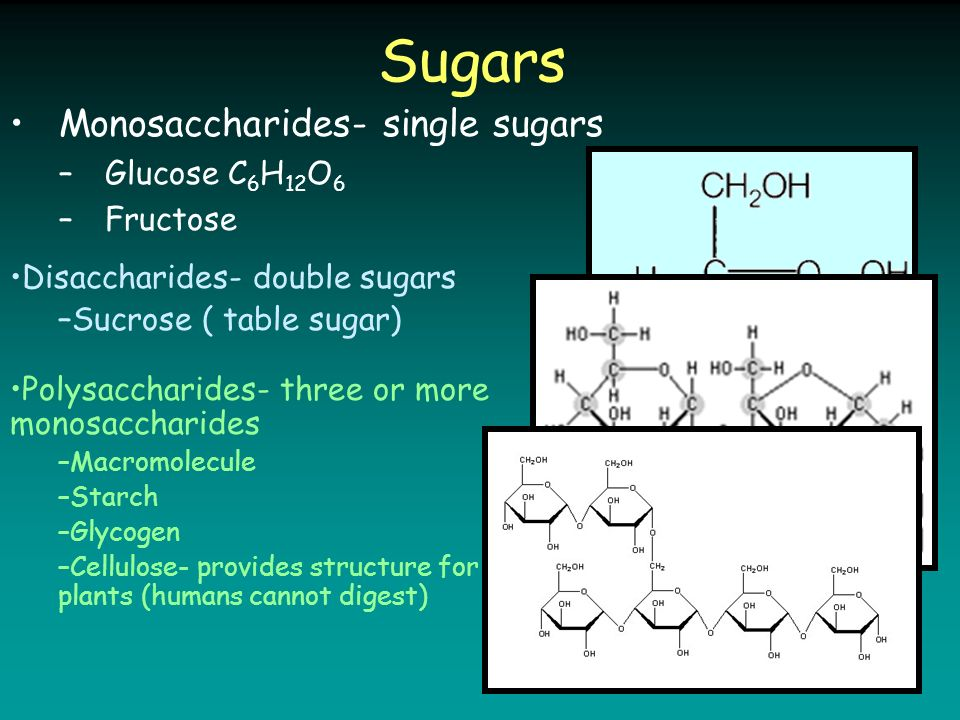 Sugars Monosaccharides- single sugars –Glucose C 6 H 12 O 6 –Fructose Disaccharides- double sugars –Sucrose ( table sugar) Polysaccharides- three or more monosaccharides –Macromolecule –Starch –Glycogen –Cellulose- provides structure for plants (humans cannot digest)