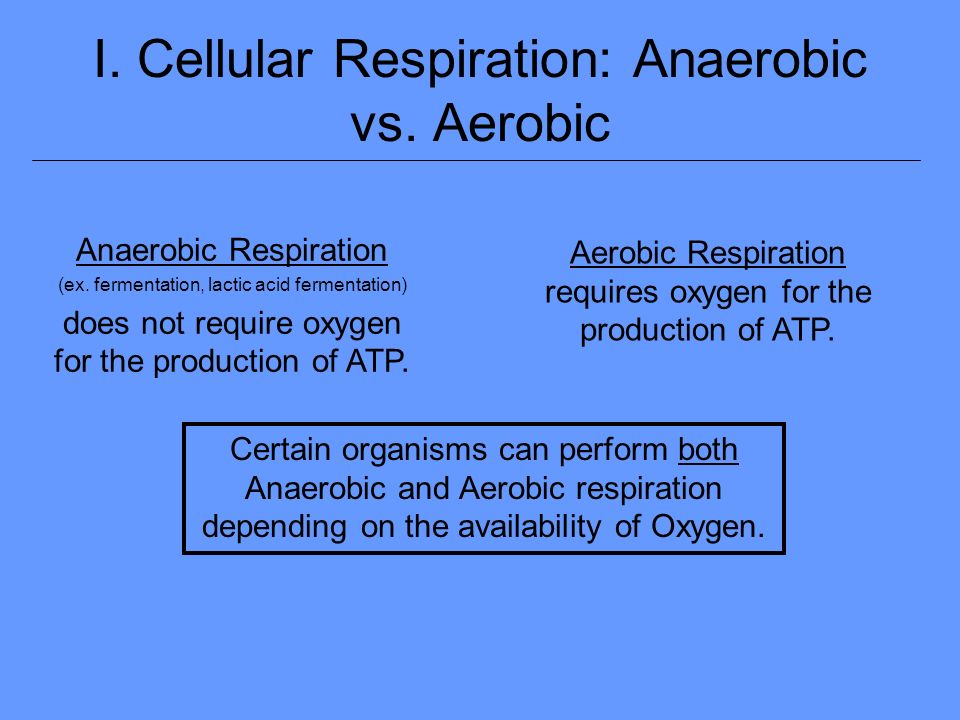 aerobic vs anaerobic essay Aerobic respiration takes place in the presence of oxygen, while anaerobic respiration takes place when no oxygen is present, according to new health guide both aerobic and anaerobic respiration.