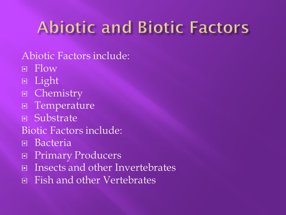 What are the Biotic and abiotic factors afffecting rivers?