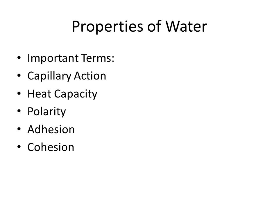 Subtraction Worksheets Year 2 Excel February  Water Lab Makeup Instructions Follow The Powerpoint  Homophone Quiz Worksheet Word with Worksheet On Trigonometric Ratios  Properties Of Water Important Terms Capillary Action Heat Capacity  Polarity Adhesion Cohesion Super Scientist Worksheet