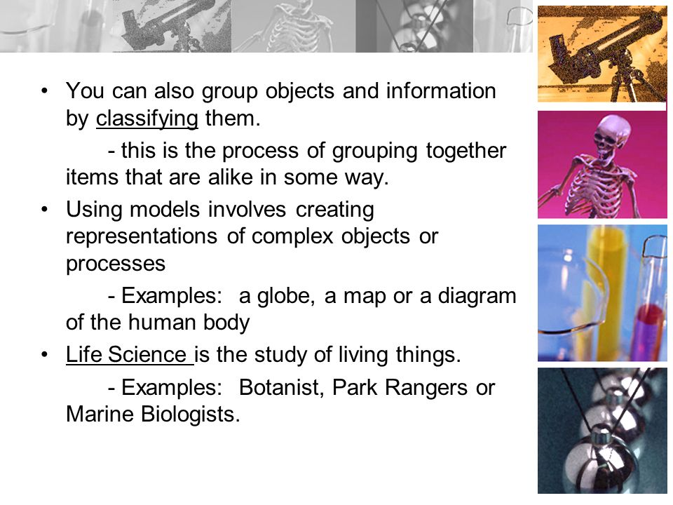 You can also group objects and information by classifying them.