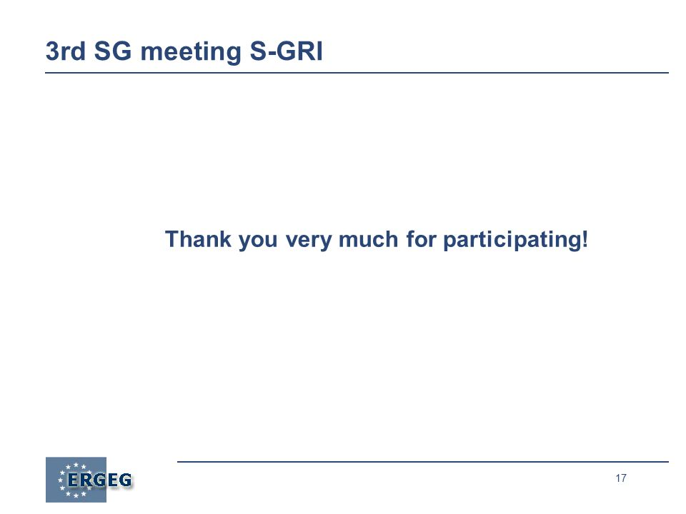 17 Thank you very much for participating! 3rd SG meeting S-GRI