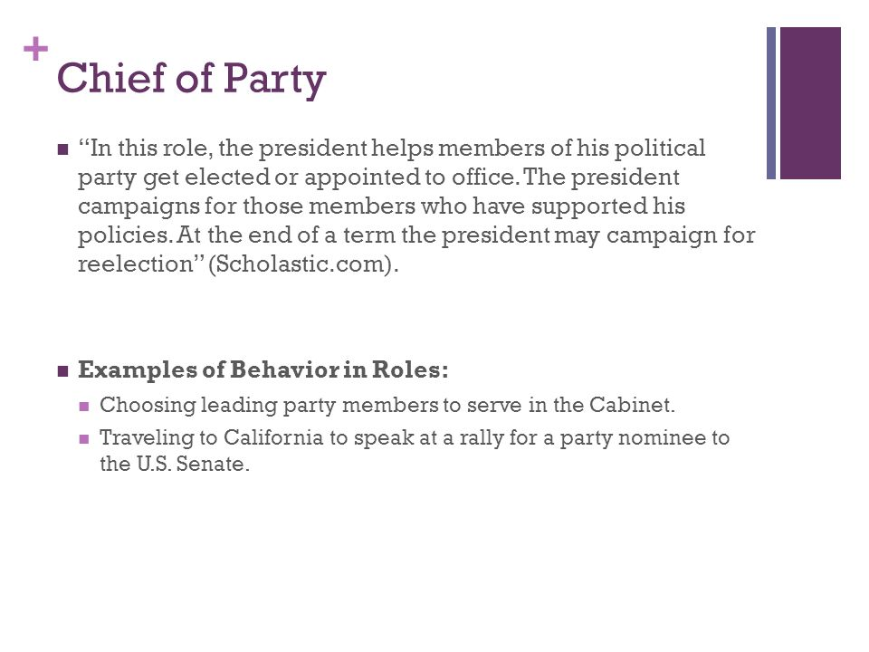 Chief Of Party Examples