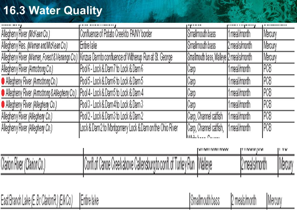 16.3 Water Quality