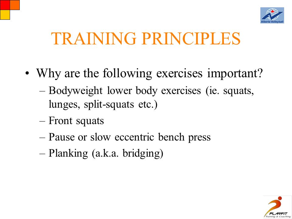 TRAINING PRINCIPLES Why are the following exercises important.