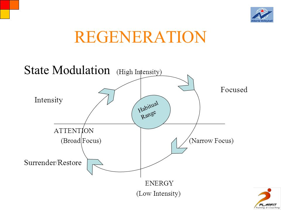 REGENERATION State Modulation (High Intensity) Focused Intensity ATTENTION (Broad Focus) (Narrow Focus) Surrender/Restore ENERGY (Low Intensity) Habitual Range
