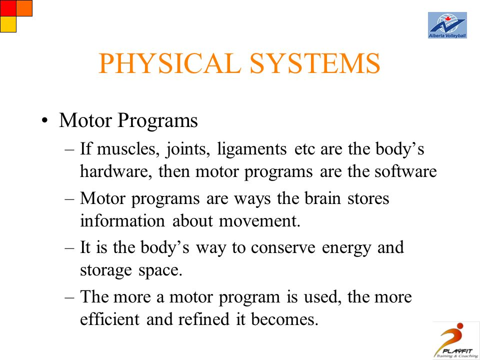 PHYSICAL SYSTEMS Motor Programs –If muscles, joints, ligaments etc are the body's hardware, then motor programs are the software –Motor programs are ways the brain stores information about movement.