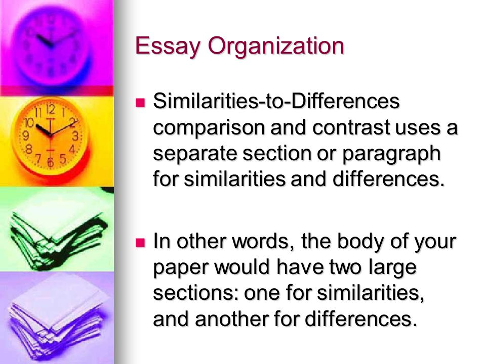 What is the difference and similarities of paragraphs and essays.?