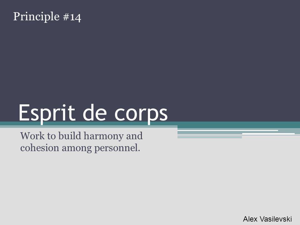 Esprit de corps Work to build harmony and cohesion among personnel. Principle #14 Alex Vasilevski
