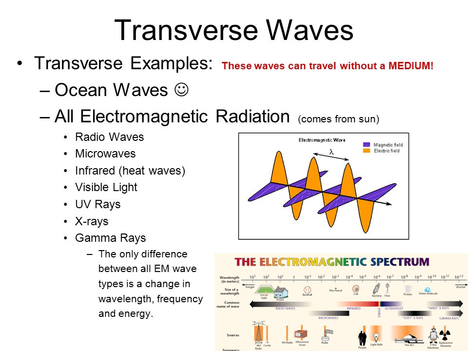 Transverse Waves Transverse Examples: These waves can travel without a MEDIUM.