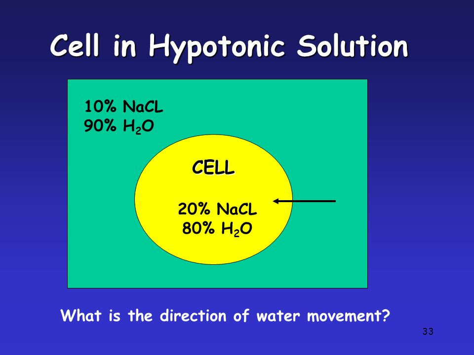 33 Cell in Hypotonic Solution CELL 10% NaCL 90% H 2 O 20% NaCL 80% H 2 O What is the direction of water movement