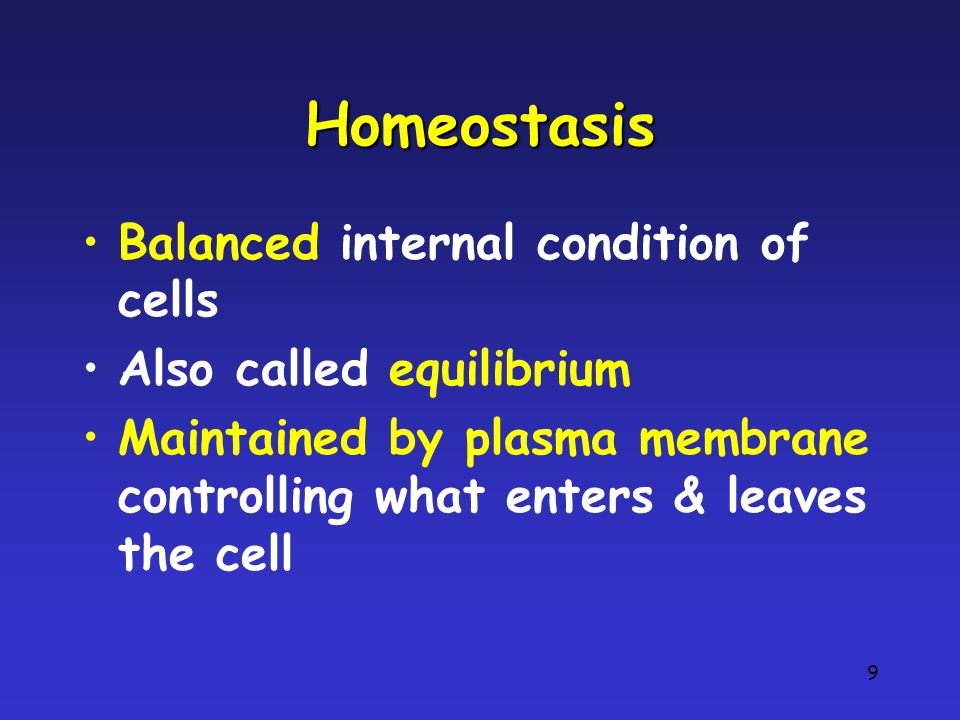 9 Homeostasis Balanced internal condition of cells Also called equilibrium Maintained by plasma membrane controlling what enters & leaves the cell