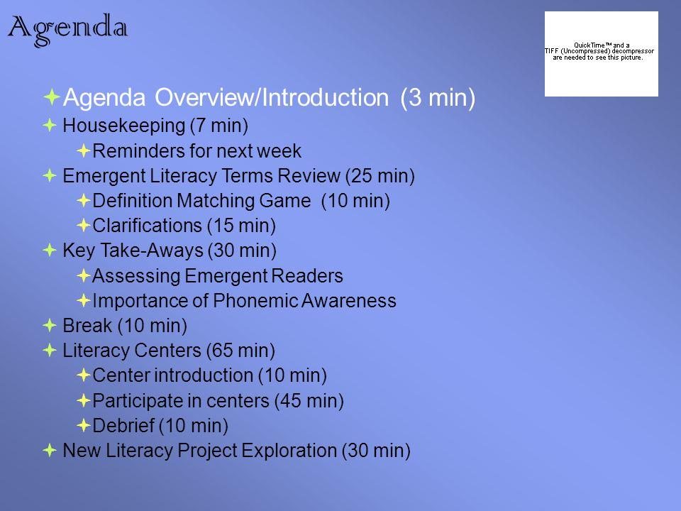3 Agenda ...