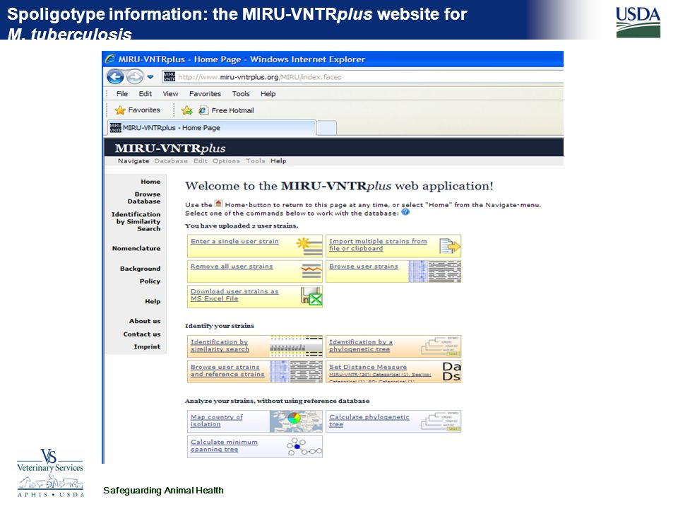 Safeguarding Animal Health Spoligotype information: the MIRU-VNTRplus website for M. tuberculosis