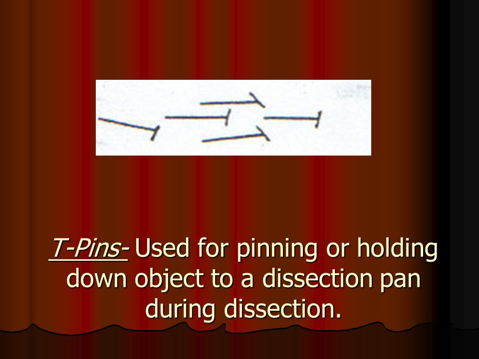 T-Pins- Used for pinning or holding down object to a dissection pan during dissection.