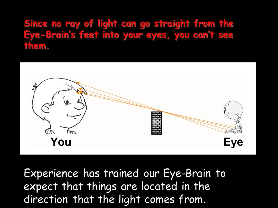 Since no ray of light can go straight from the Eye-Brain's feet into your eyes, you can't see them.