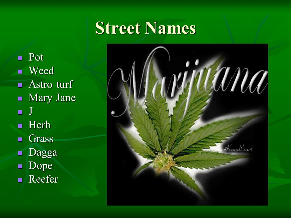 weed cannabis and mary jane Mary jane marijuana boutique come visit us today.