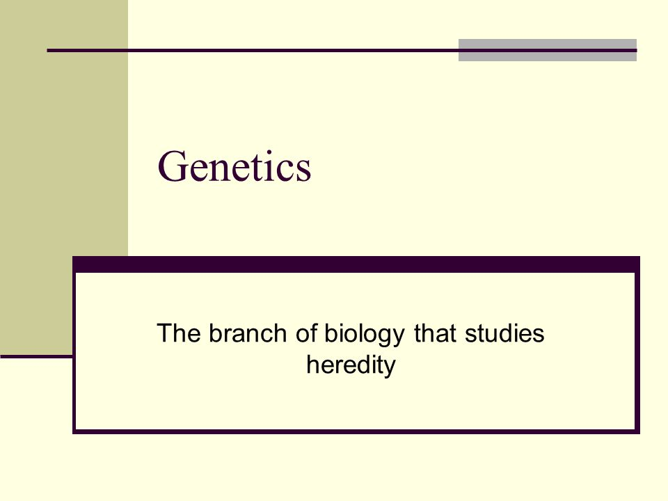 Genetics The branch of biology that studies heredity