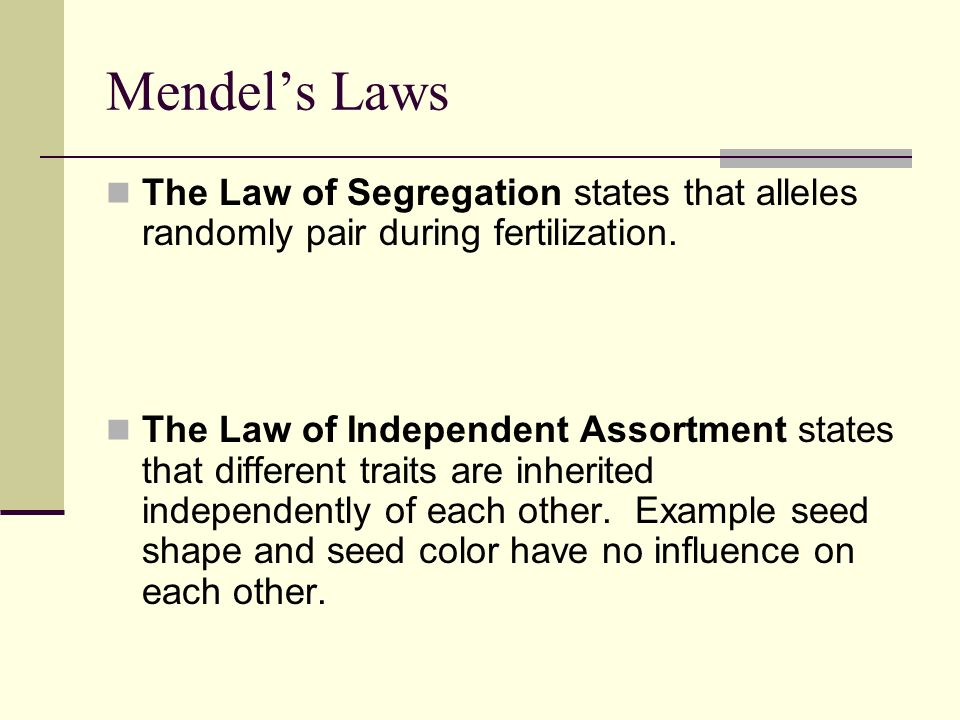 Mendel's Laws The Law of Segregation states that alleles randomly pair during fertilization.