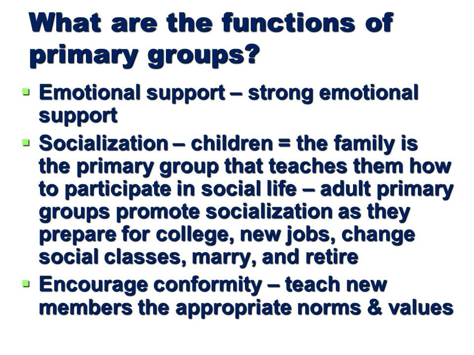 What are the functions of primary groups.