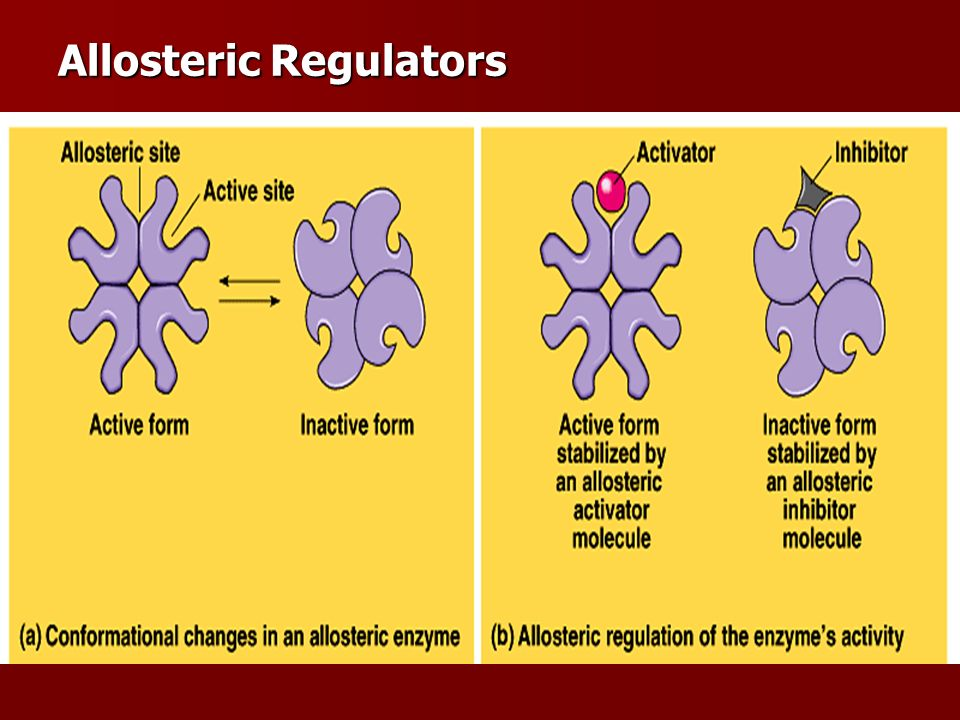 Allosteric Regulators