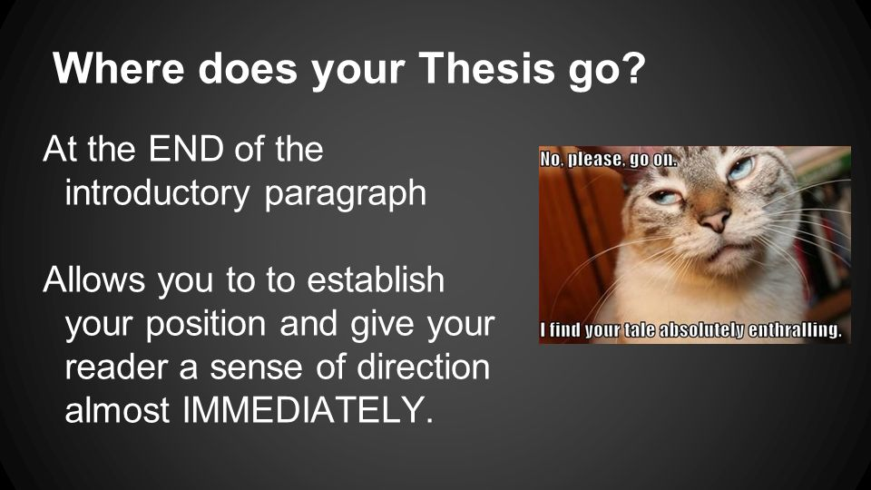 where do you find the thesis statement