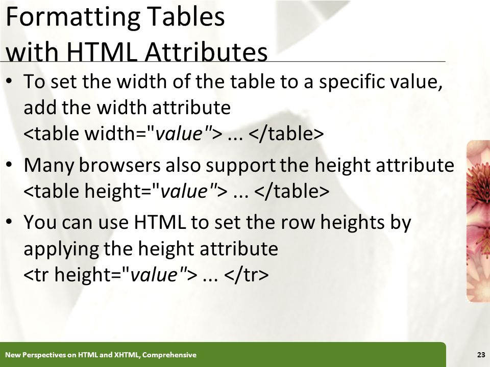 sc 1 st  tagranks.com : set table width in html - pezcame.com