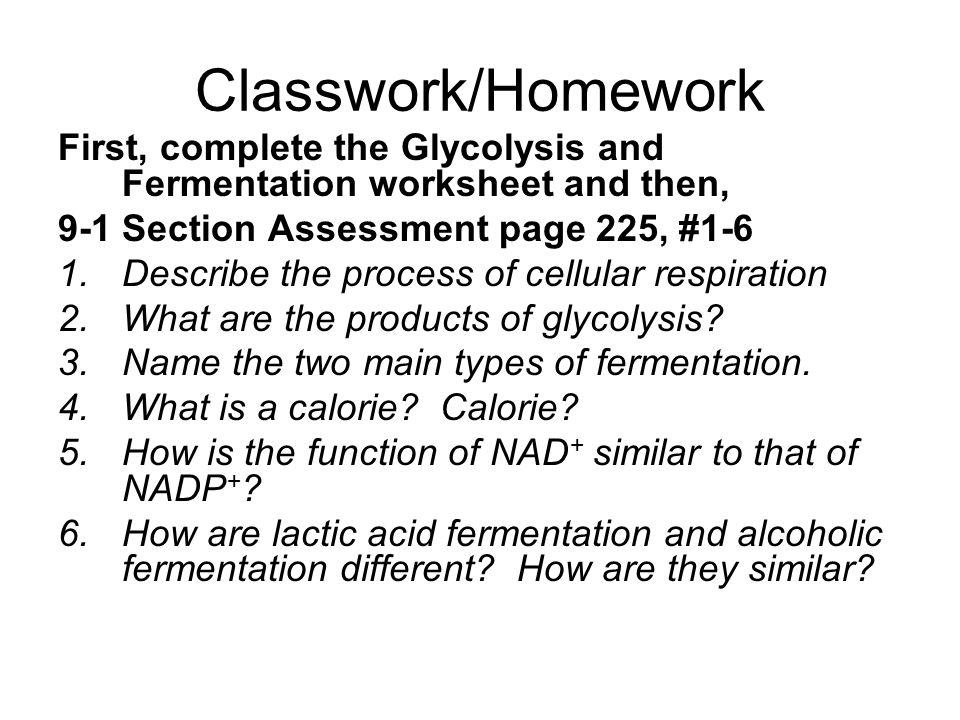 O 2 C 6 H 12 O 6 CO 2 H 2 O ATP What is it The chemical – Fermentation Worksheet