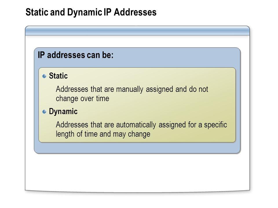 Ip address not assigned