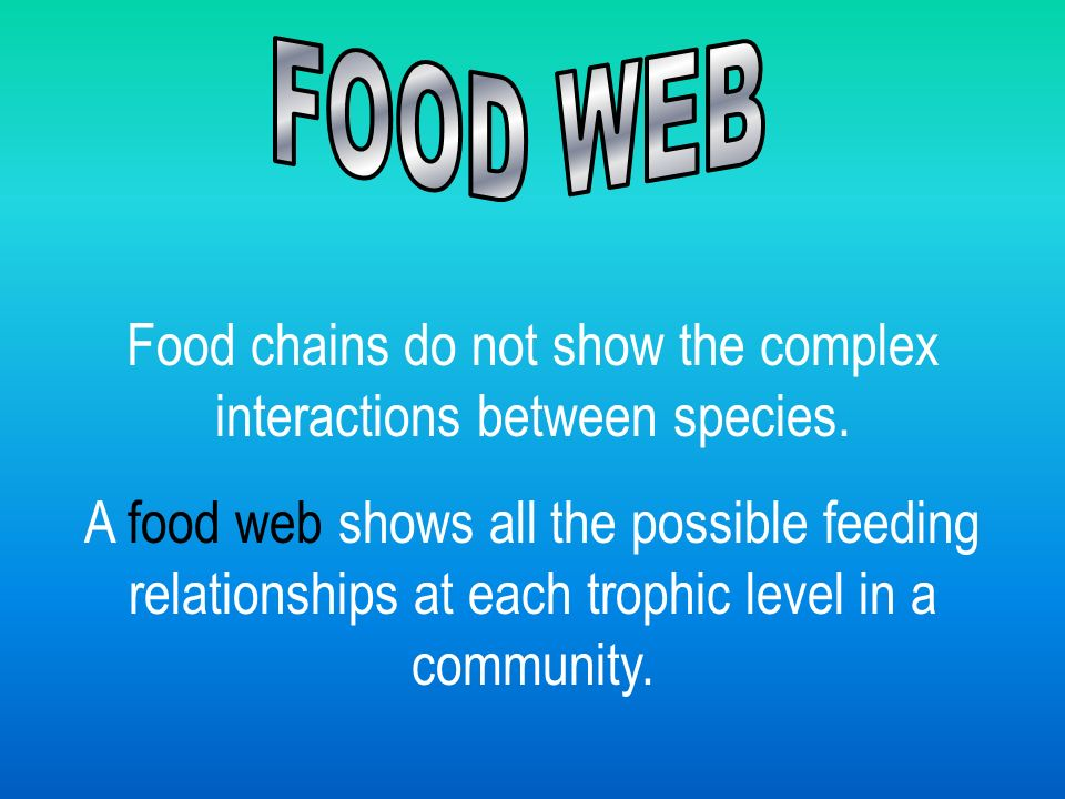 Food chains do not show the complex interactions between species.